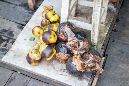 cambodian palm: Asian Palmyra palma, Toddy palma, zucchero di palma, palmo cambogiano.