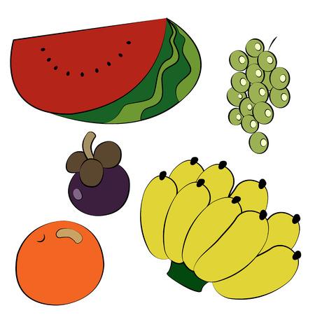 Black outline vector fruit on white background. Vector