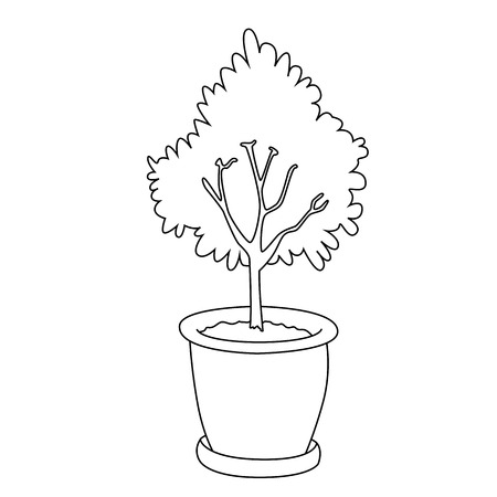 Tree in a pot on the white background. Vector