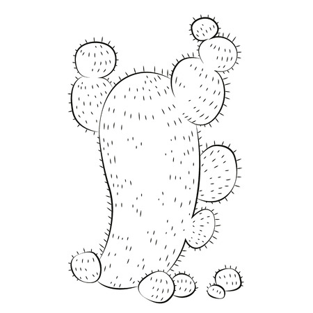 Black outline vector cactus on white background. Vector