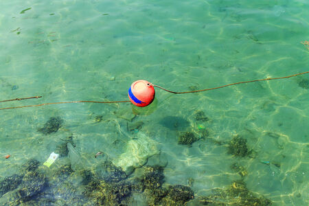 buoyancy: The red buoy on the sea water.