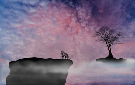 convective: Tiger tree clouds, Stock Photo