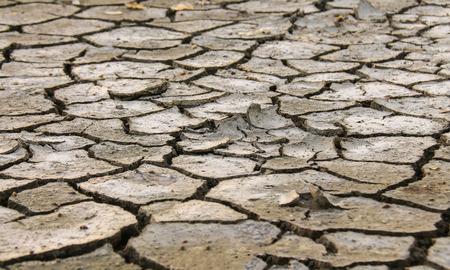 degradation: Land degradation separate natural background pattern. Stock Photo
