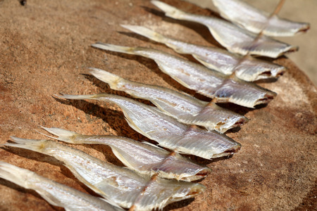 perch dried: Salted fish under the sun.