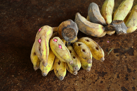 problematic: yellow banana with many pills for sick elephant