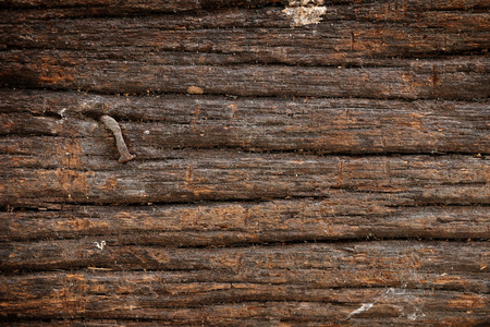 rusty nail: Rusty nail in wood plank Stock Photo