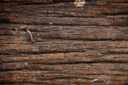 rusty nail: Rusty nail in wood plank Stock Photo