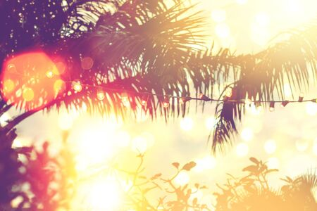 blurred light bokeh with coconut palm tree background on sunset, yellow string lights with bokeh decor in outdoor restaurant Stock Photo