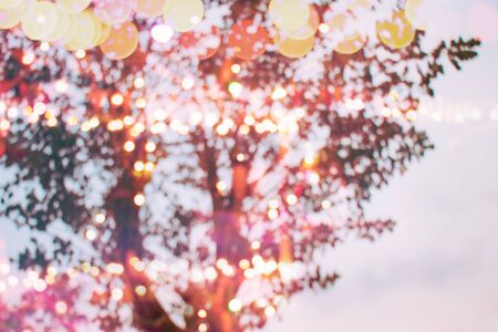 defocused light bulbs decoration bokeh night trees branch in holiday festival background, romantic place of love.
