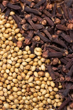 close up of dried coriander seeds and clove background, dried spicy herb for food aroma and natural medicine, ingredient in Indian spices