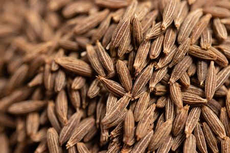 close up of dried cumin seeds, important spice in curry and massaman curry Standard-Bild