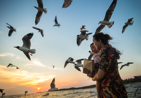 Mother and daughter feeding birds at the beach at sunset. Stock Photo