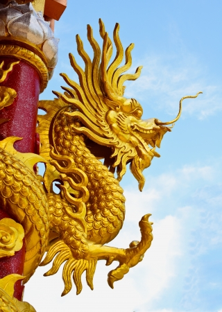 dragon Stock Photo - 16633333