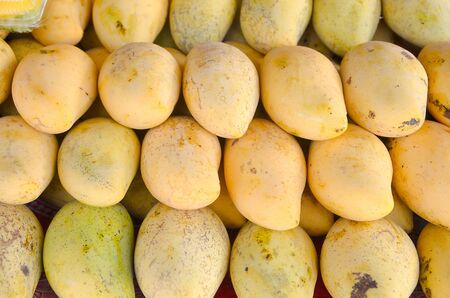 mango  fruit Stock Photo - 18705974