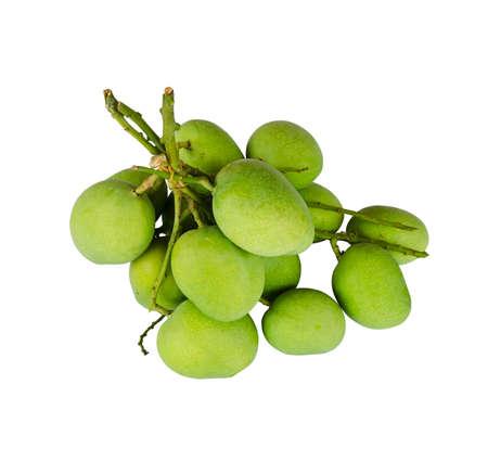 A group of freshness mango on white background Stock Photo - 18865261