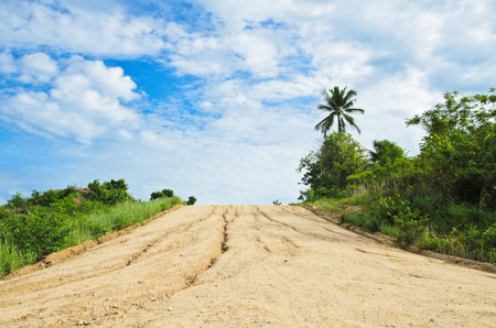 disappears: A long, straight dirt road disappears  landscape