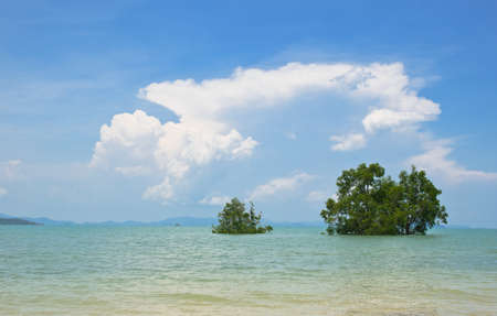 cloud and blue sky, and the tree in sea in phuket thailand Stock Photo