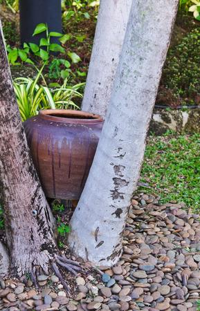 Old jar between the tree Stock Photo