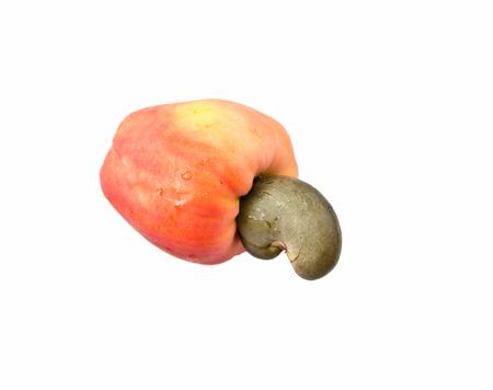 Fresh Cashew Nut isolated on white background Stock Photo