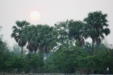 Sun goes down in thailand