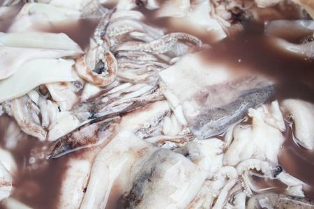Grilled squid Reklamní fotografie - 19979121