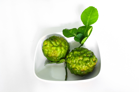 Bergamot herb for cooking photo