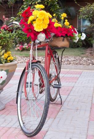 decorated bike: Biciclette decorate con fiori