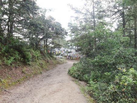 uphill Routes in Bhutan photo