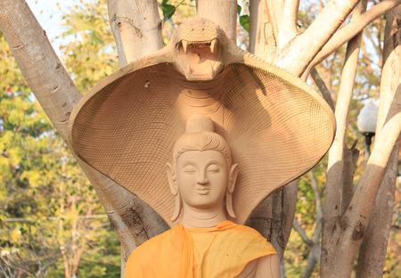 spiffy: Buddha statue
