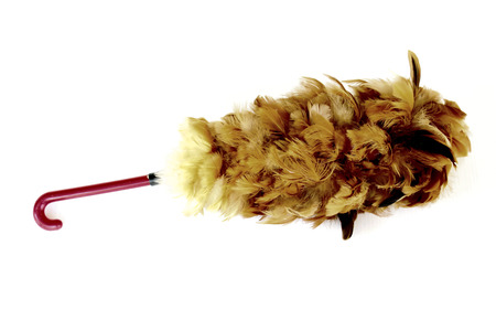 Cock Feather Duster on white background. photo