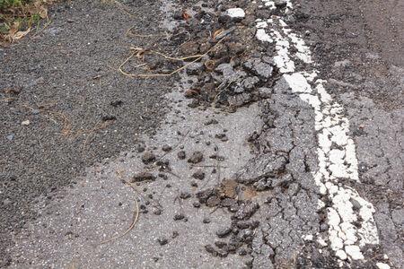 earthquake crack: damaged road