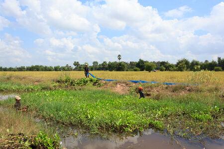 MAHASARAKHAM,THAILAND - NOVEMBER 6 : People are dredging the public water supply on November 6,2014 in Mahasarakham,Thailand Editorial