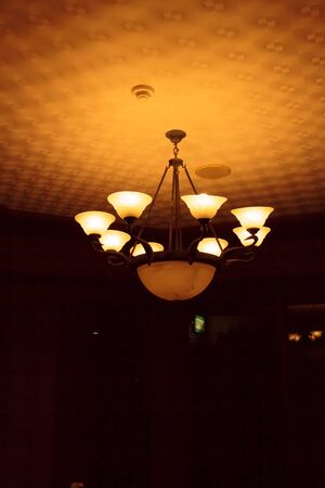 ceiling: Ceiling light beautiful shape