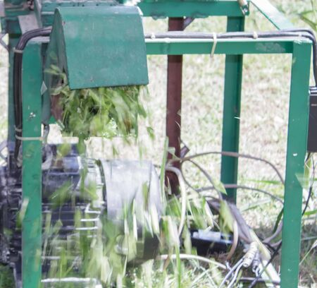 cutting: Machines for cutting grass Stock Photo