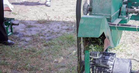 machines: Machines for cutting grass Stock Photo