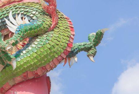 garra: Garra de dragón