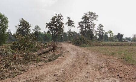 rural development: dirt road is under construction Stock Photo
