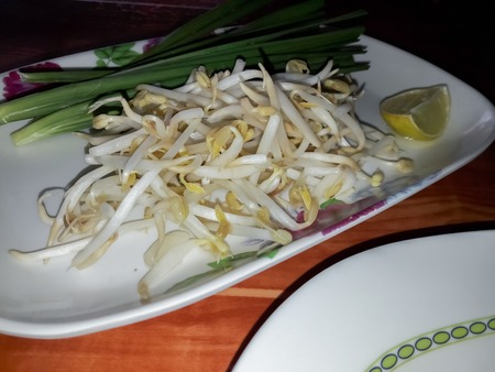 bean sprouts: bean sprouts in plate