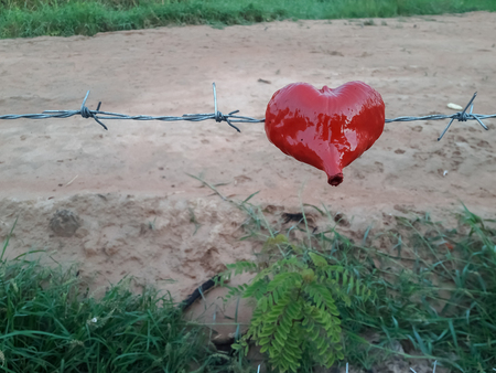 Heart hangs on a barbed wire fence.
