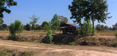 Pavilion for relaxing in the field of rural Thailand.