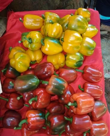 Sweet pepper for sale Stok Fotoğraf