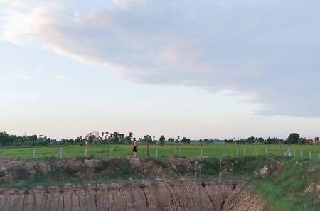 Rice fields and ponds Stok Fotoğraf