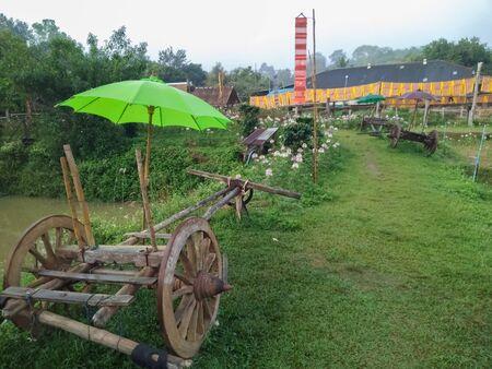 Green umbrella on the wagon
