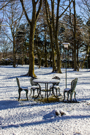 Outdoor garden and table set with a dusting of snow. photo