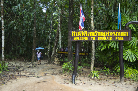 unseen: Entrance to Emerald Pool is unseen pool in mangrove forest at Krabi in Thailand. Stock Photo