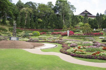 garish: take from Mae Fah Luang Garden,locate on Doi Tung,Thailand
