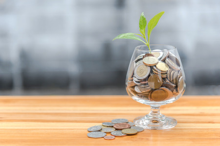 clear bottle: Coins and seed in clear bottle on blurred background Stock Photo