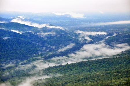 landscape of the foggy morning in pa hi ngam national park  thailand Stock Photo - 15787355