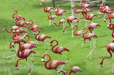 pink flamingo: Bird flamingo model Stock Photo