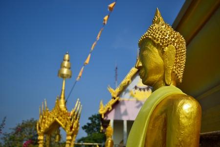 Golden buddha statue in Thailand